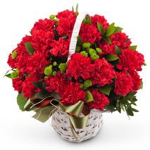 카네이션꽃바구니-카네이션 사랑