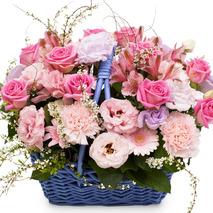 카네이션꽃바구니-감사 바구니