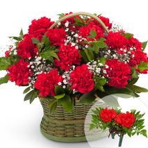 카네이션꽃바구니+코사지2개(꽃행복209호)