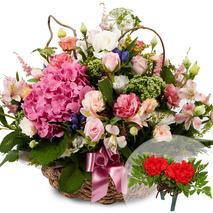 카네이션꽃바구니(코사지무료)