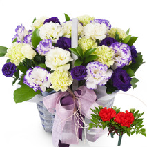 카네이션꽃바구니-코사지무료