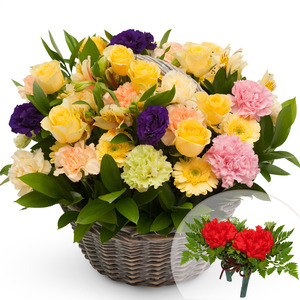카네이션꽃바구니-오렌지믹스