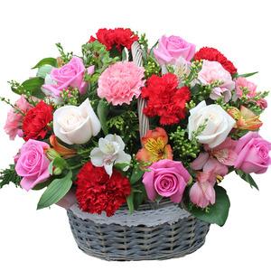 카네이션꽃바구니-카네이션사랑