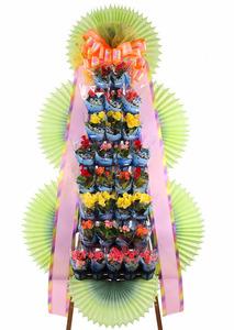 100%국산꽃생화 포트식화환