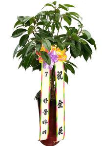 개업화분배달 대엽홍콩