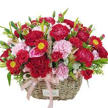 카네이션꽃바구니 하프23