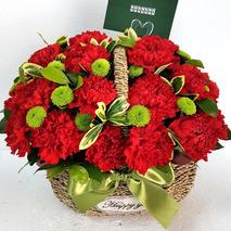 카네이션꽃바구니 하프41